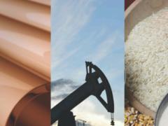 Investire in materie prime: segreti e consigli